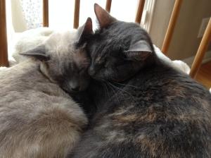Aggie & Judy